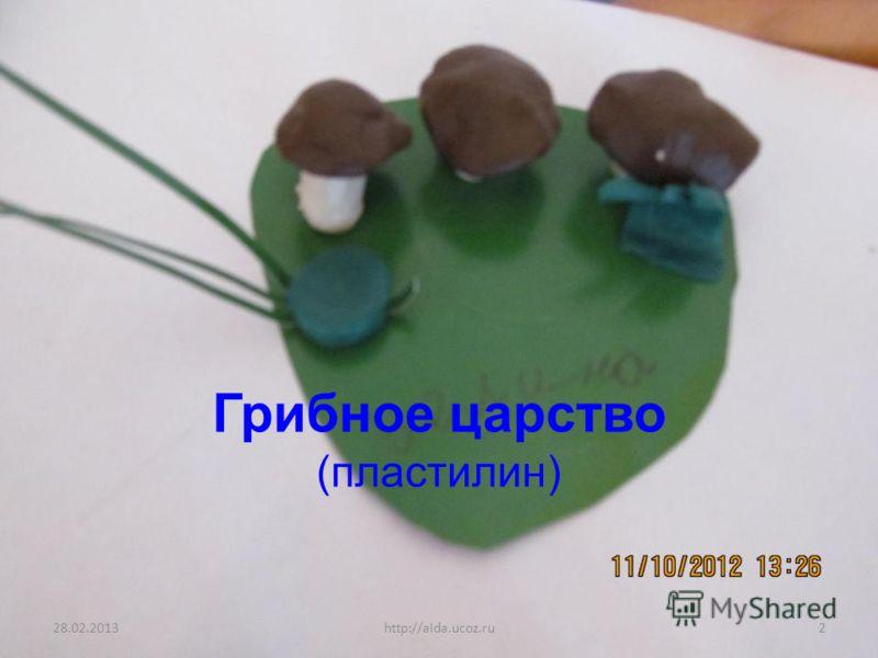 Грибное царство (пластилин) 28.02.20132http://aida.ucoz.ru