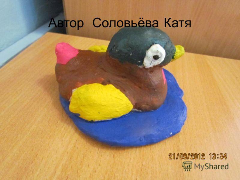 Автор Соловьёва Катя