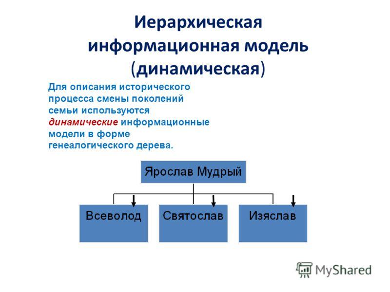 Иерархическая информационная модель (динамическая) Для описания исторического процесса смены поколений семьи используются динамические информационные модели в форме генеалогического дерева.