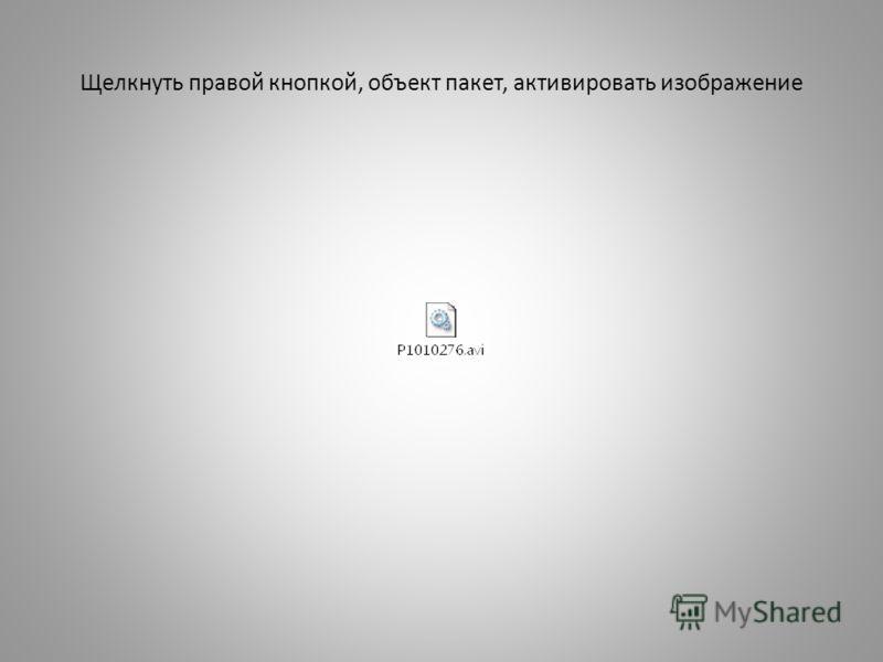Щелкнуть правой кнопкой, объект пакет, активировать изображение
