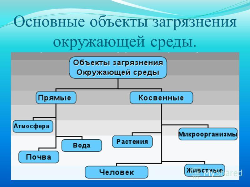 Основные объекты загрязнения окружающей среды.