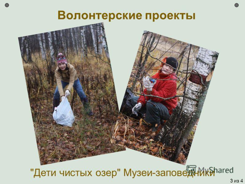 Волонтерские проекты Дети чистых озер Музеи-заповедники 3 из 4