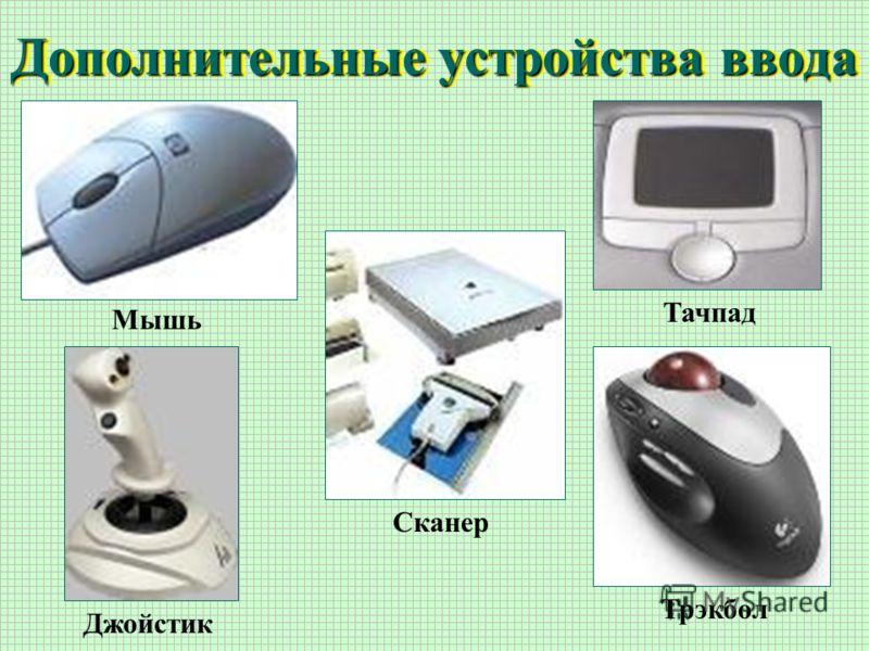 Дополнительные устройства ввода Мышь Сканер Тачпад Трэкбол Джойстик