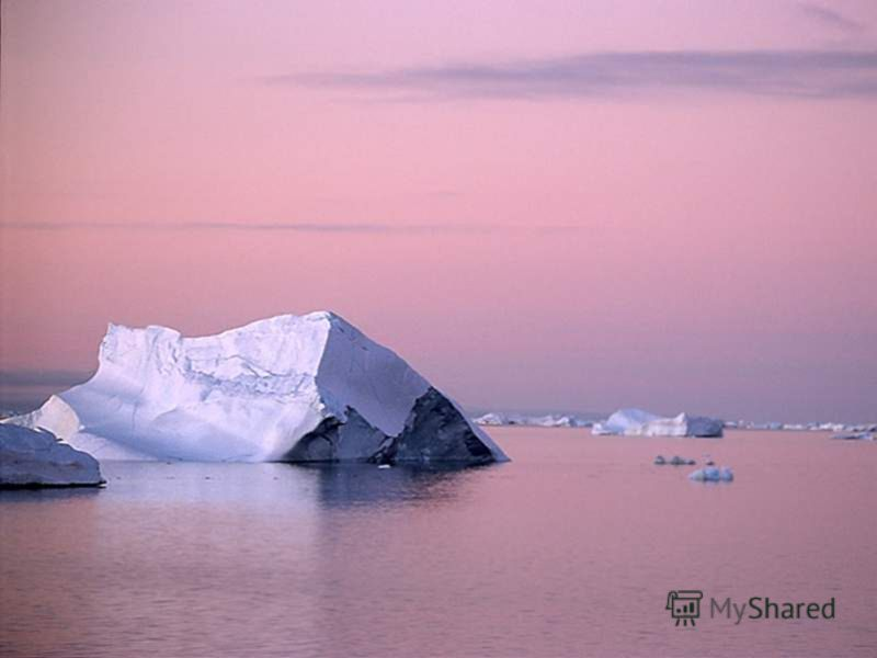 In spite of the severe weather Antarctica has rich animal life amazingly well adapted to the harsh conditions. Несмотря на суровую погоду, Антарктида имеет богатую животную жизнь, удивительно хорошо приспособленную к жестким условиям.