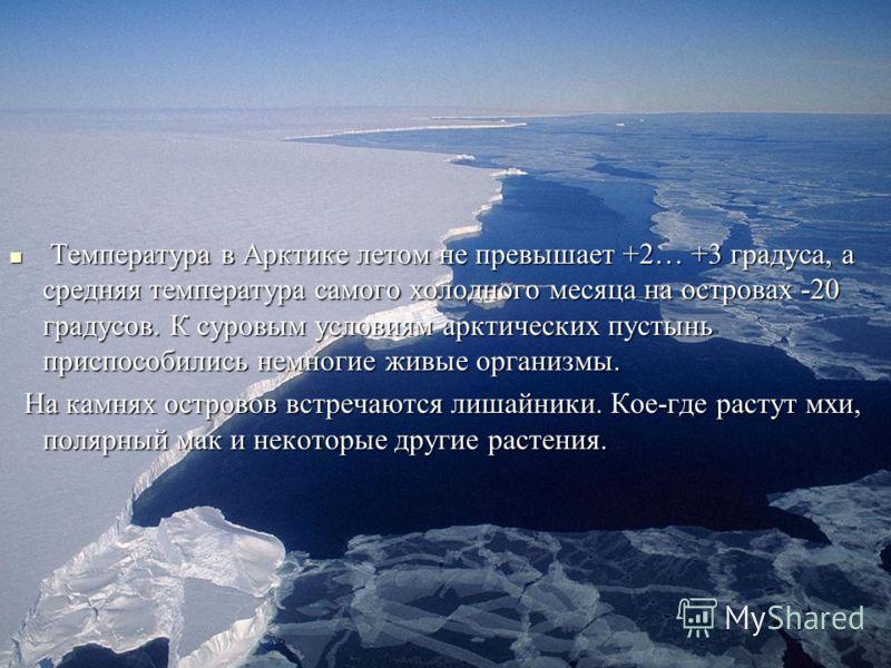 Температура в Арктике летом не превышает +2… +3 градуса, а средняя температура самого холодного месяца на островах -20 градусов. К суровым условиям арктических пустынь приспособились немногие живые организмы. Температура в Арктике летом не превышает
