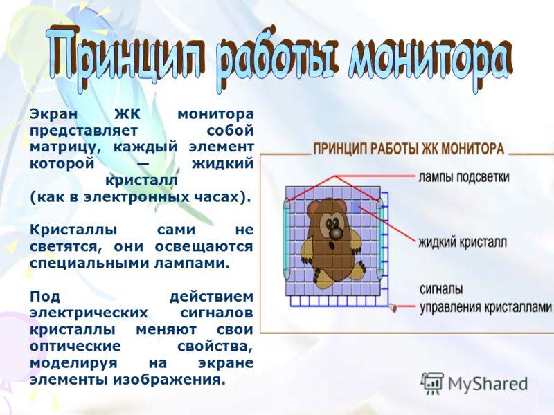 Экран ЖК монитора представляет собой матрицу, каждый элемент которой жидкий кристалл (как в электронных часах). Кристаллы сами не светятся, они освещаются специальными лампами. Под действием электрических сигналов кристаллы меняют свои оптические сво