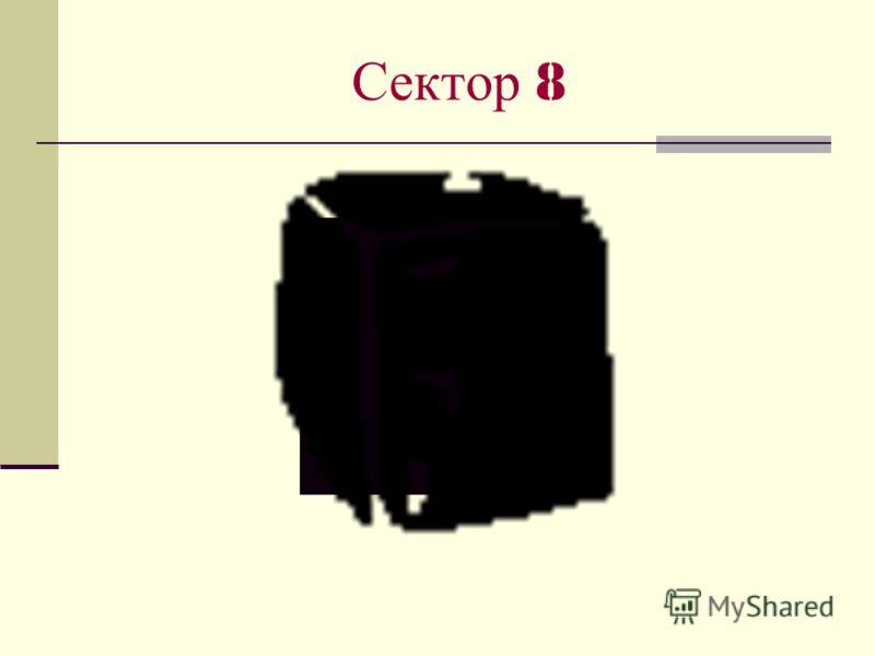 Сектор 8