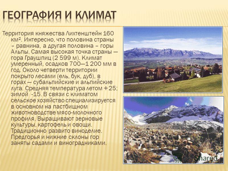 Территория княжества Лихтенштейн 160 км². Интересно, что половина страны – равнина, а другая половина – горы Альпы. Самая высокая точка страны гора Граушпиц (2 599 м). Климат умеренный, осадков 7001 200 мм в год. Около четверти территории покрыто лес