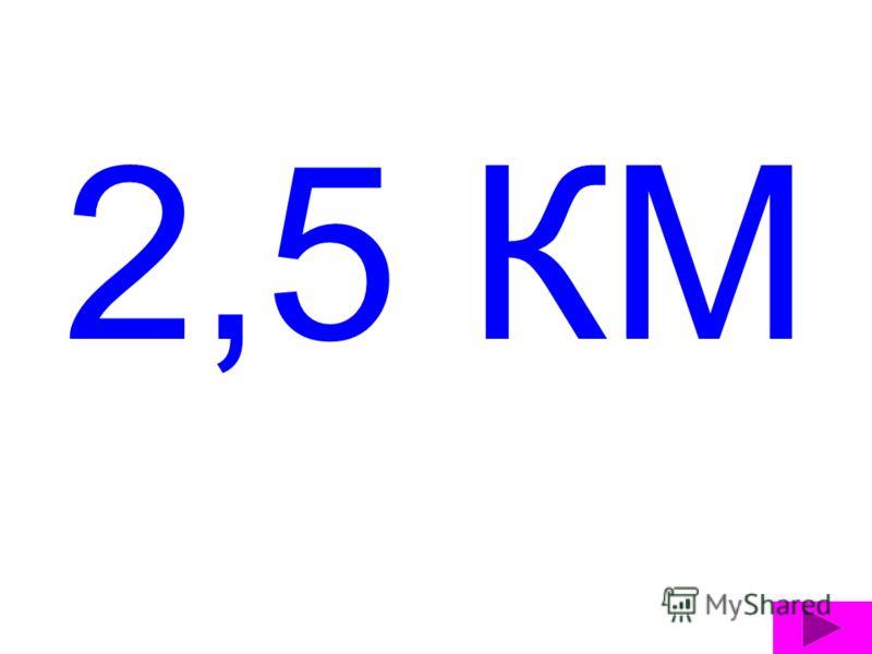 2,5 КМ