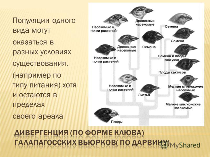 Популяции одного вида могут оказаться в разных условиях существования, (например по типу питания) хотя и остаются в пределах своего ареала