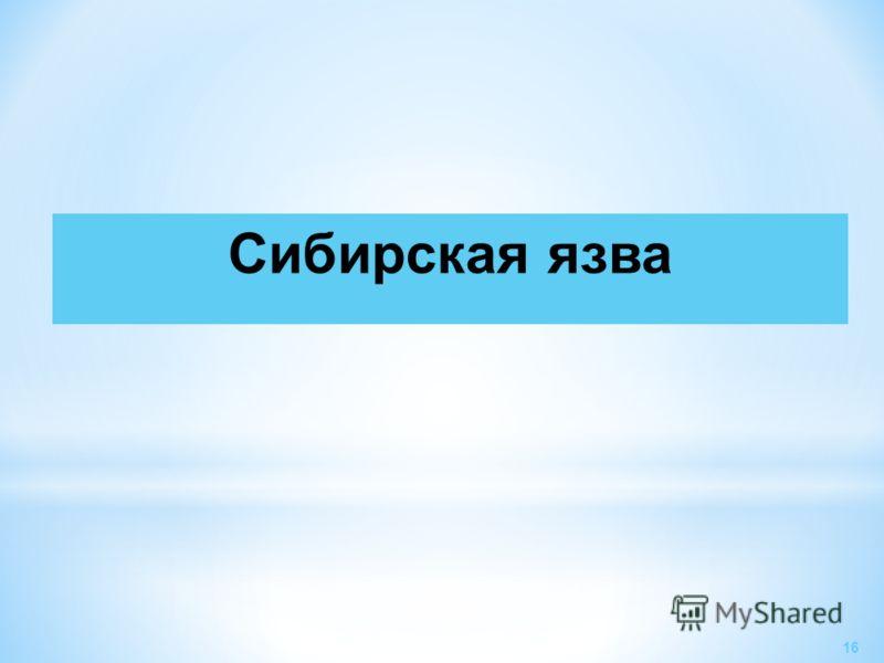 Сибирская язва 16