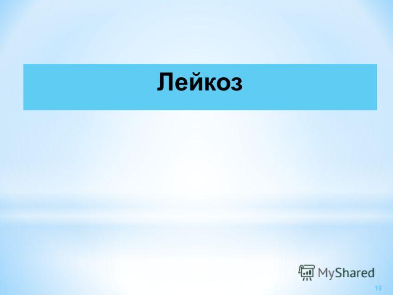 Лейкоз 19