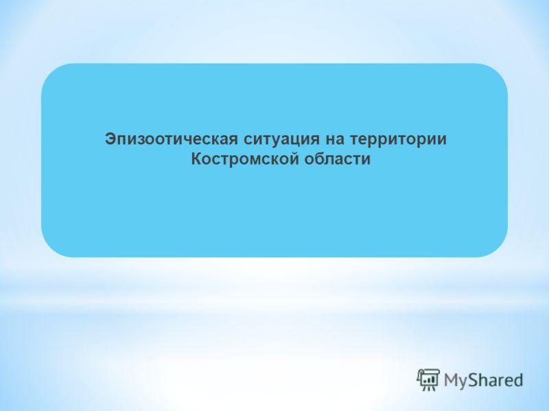Эпизоотическая ситуация на территории Костромской области