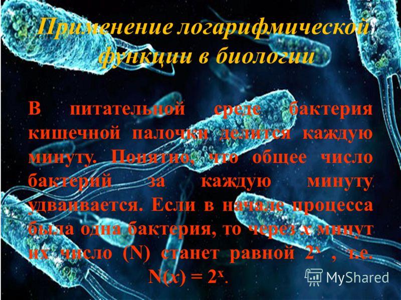 Применение логарифмической функции в биологии В питательной среде бактерия кишечной палочки делится каждую минуту. Понятно, что общее число бактерий за каждую минуту удваивается. Если в начале процесса была одна бактерия, то через х минут их число (N