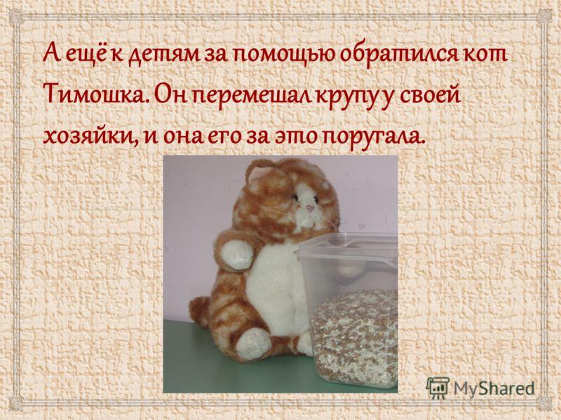 А ещё к детям за помощью обратился кот Тимошка. Он перемешал крупу у своей хозяйки, и она его за это поругала.