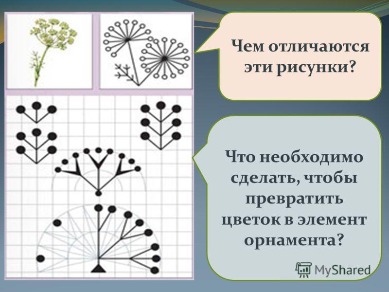 Чем отличаются эти рисунки? Что необходимо сделать, чтобы превратить цветок в элемент орнамента?
