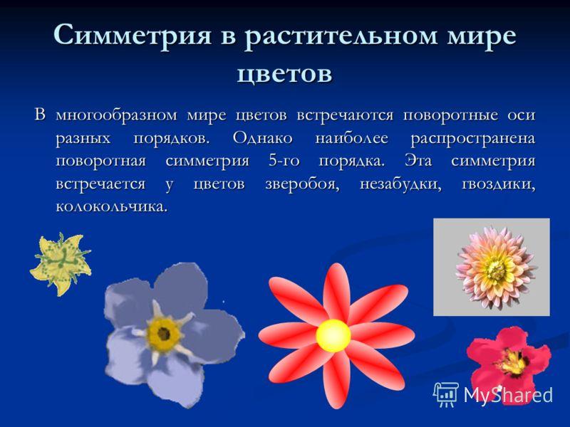 Симметрия в растительном мире цветов В многообразном мире цветов встречаются поворотные оси разных порядков. Однако наиболее распространена поворотная симметрия 5-го порядка. Эта симметрия встречается у цветов зверобоя, незабудки, гвоздики, колокольч