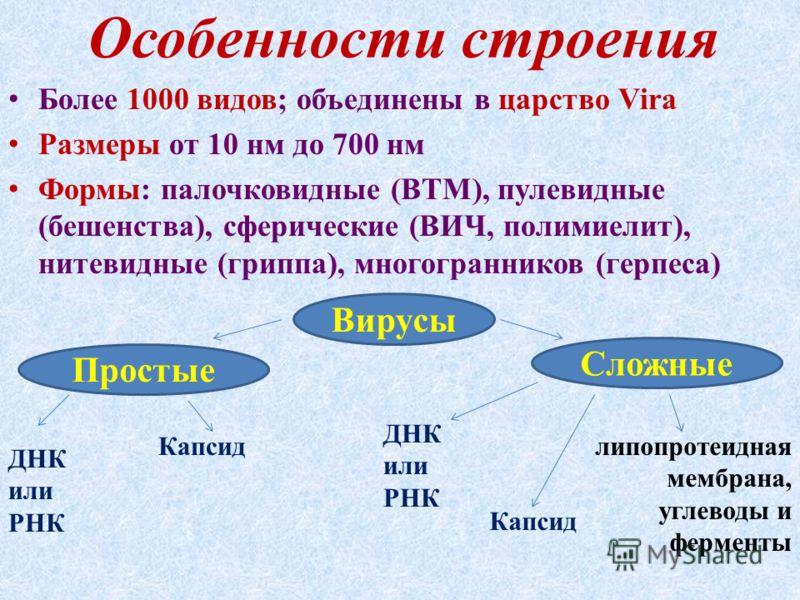 Особенности строения Более 1000 видов; объединены в царство Vira Размеры от 10 нм до 700 нм Формы: палочковидные (ВТМ), пулевидные (бешенства), сферические (ВИЧ, полимиелит), нитевидные (гриппа), многогранников (герпеса) Вирусы Простые Сложные ДНК ил