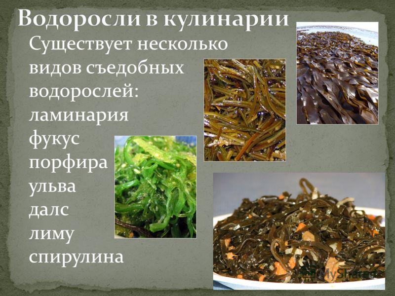 Существует несколько видов съедобных водорослей: ламинария фукус порфира ульва далс лиму спирулина