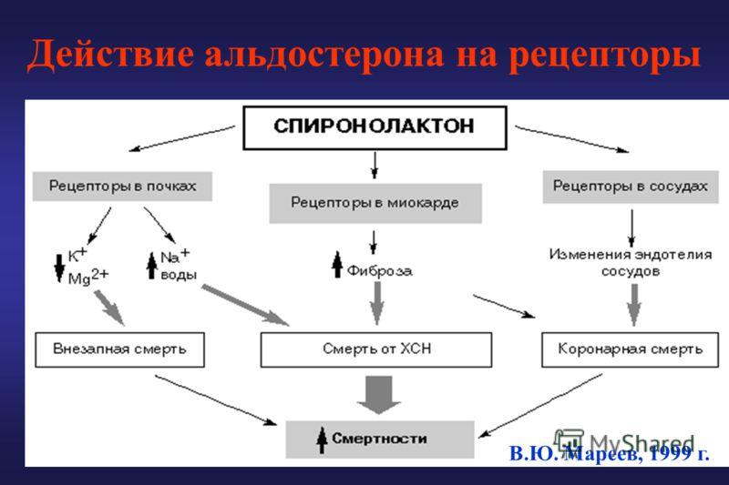 Действие альдостерона на рецепторы В.Ю. Мареев, 1999 г.