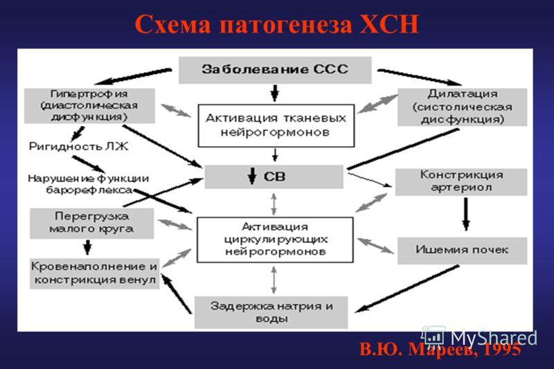 Схема патогенеза ХСН В.Ю. Мареев, 1995
