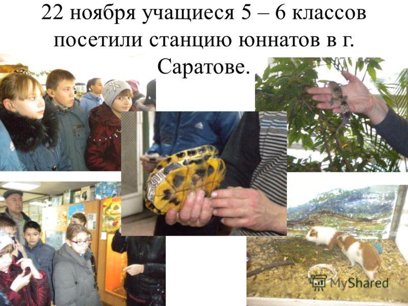22 ноября учащиеся 5 – 6 классов посетили станцию юннатов в г. Саратове.