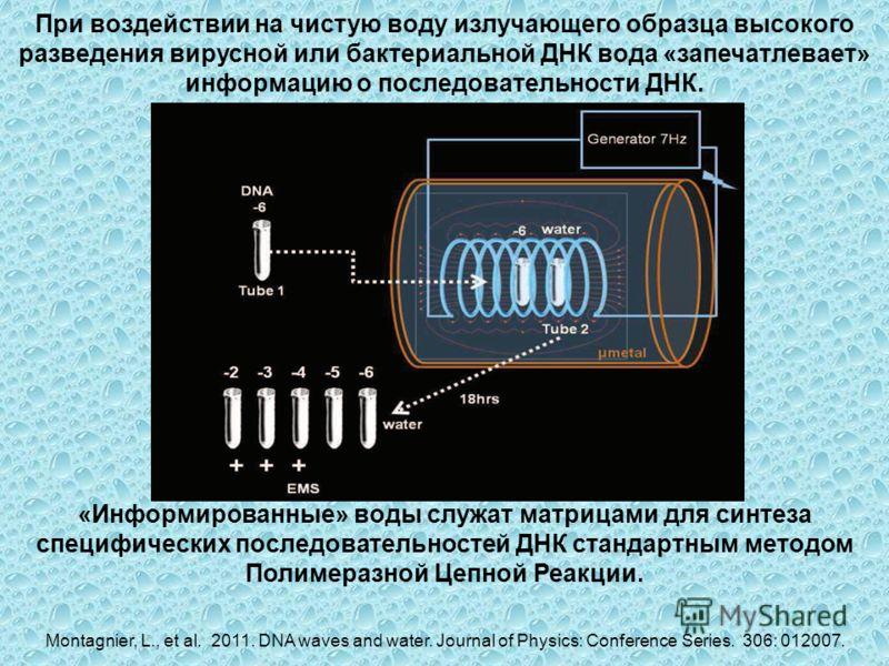 При воздействии на чистую воду излучающего образца высокого разведения вирусной или бактериальной ДНК вода «запечатлевает» информацию о последовательности ДНК. «Информированные» воды служат матрицами для синтеза специфических последовательностей ДНК