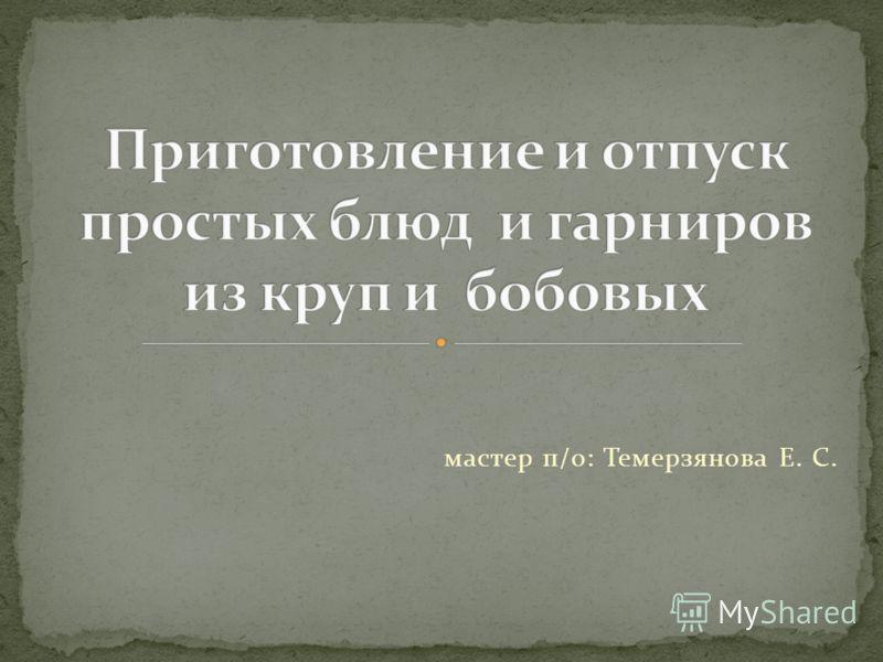 мастер п/о: Темерзянова Е. С.