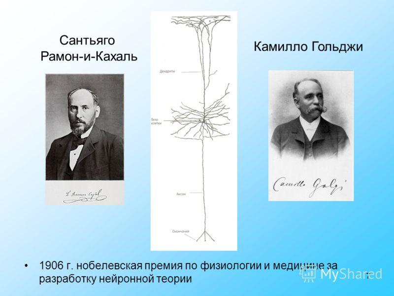 7 Камилло Гольджи Сантьяго Рамон-и-Кахаль 1906 г. нобелевская премия по физиологии и медицине за разработку нейронной теории