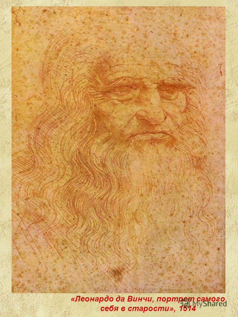 «Леонардо да Винчи, портрет самого себя в старости», 1514