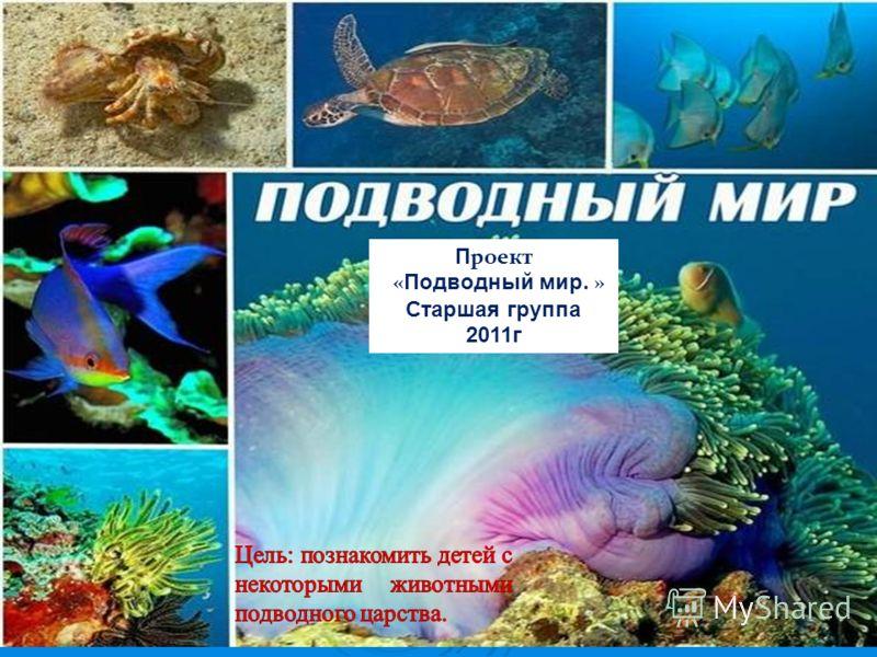 П роект « Подводный мир. » Старшая группа 2011г