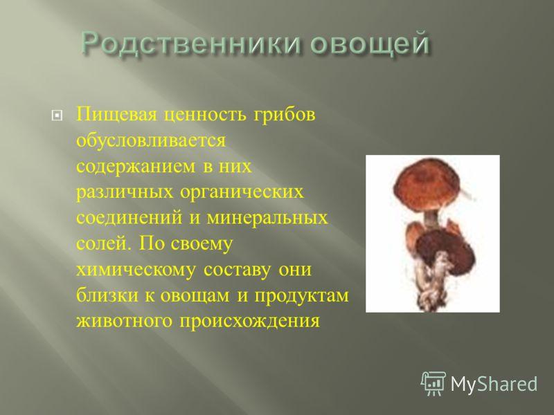 Пищевая ценность грибов обусловливается содержанием в них различных органических соединений и минеральных солей. По своему химическому составу они близки к овощам и продуктам животного происхождения