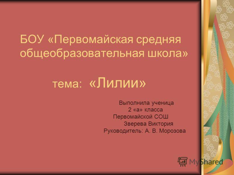 Презентация на тему степанова лилия о нем