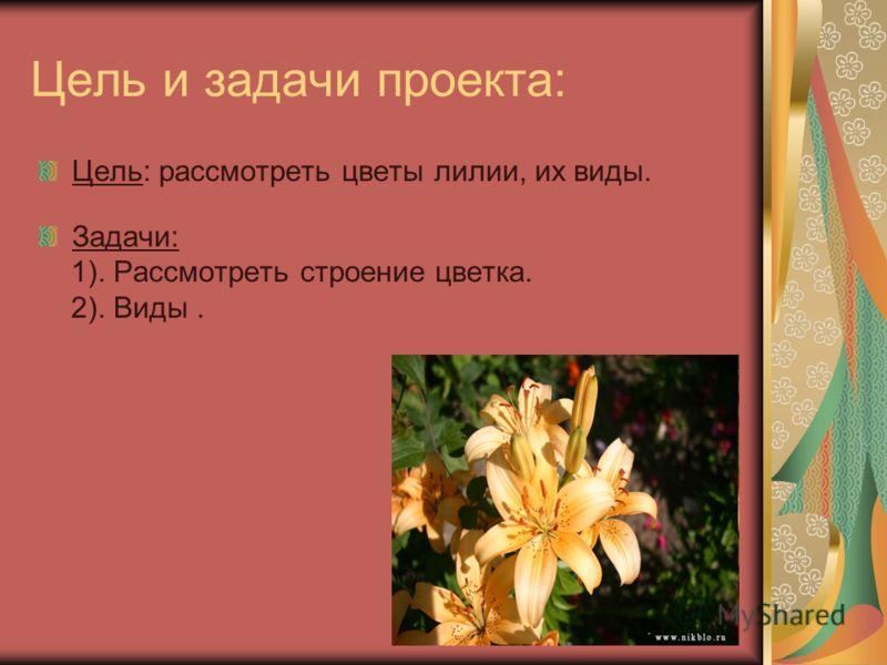 Цель и задачи проекта: Цель: рассмотреть цветы лилии, их виды. Задачи: 1). Рассмотреть строение цветка. 2). Виды.