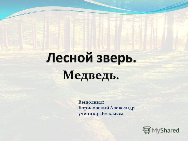 Медведь. Выполнил: Борисовский Александр ученик 3 «Б» класса