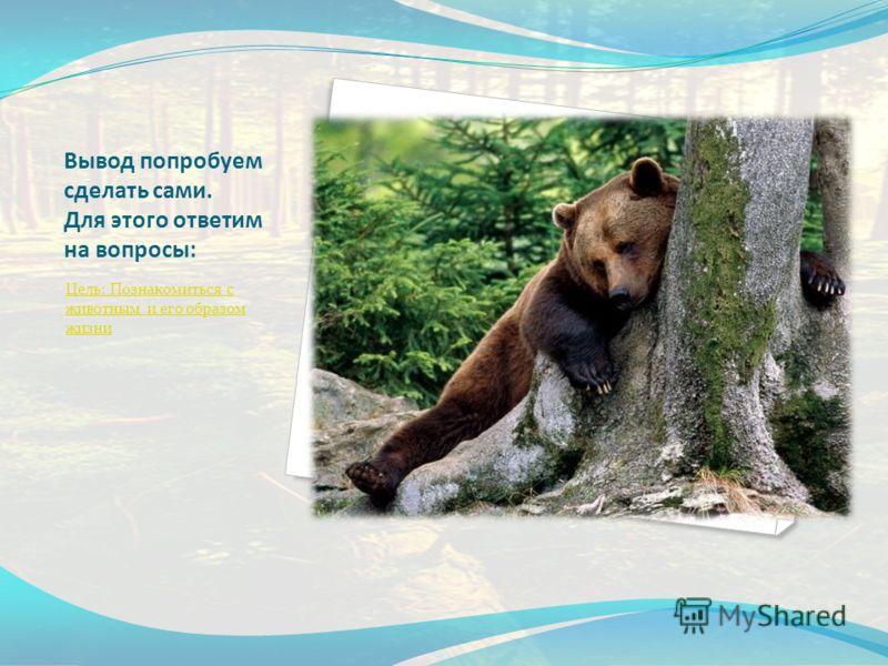 Вывод попробуем сделать сами. Для этого ответим на вопросы: Цель: Познакомиться с животным и его образом жизни