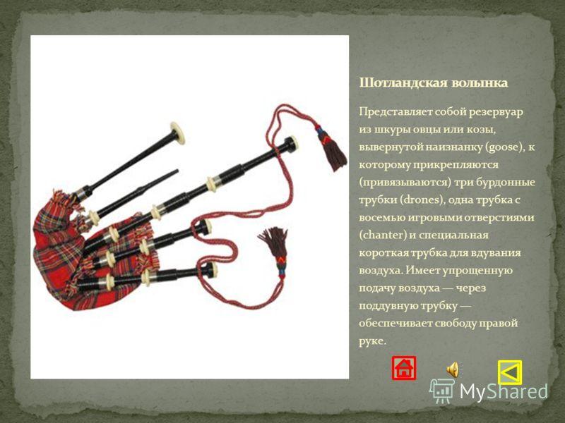 Представляет собой резервуар из шкуры овцы или козы, вывернутой наизнанку (goose), к которому прикрепляются (привязываются) три бурдонные трубки (drones), одна трубка с восемью игровыми отверстиями (chanter) и специальная короткая трубка для вдувания