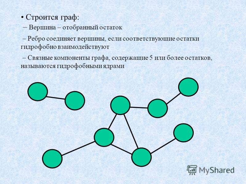 Строится граф: – Вершина – отобранный остаток – Ребро соединяет вершины, если соответствующие остатки гидрофобно взаимодействуют – Связные компоненты графа, содержащие 5 или более остатков, называются гидрофобными ядрами
