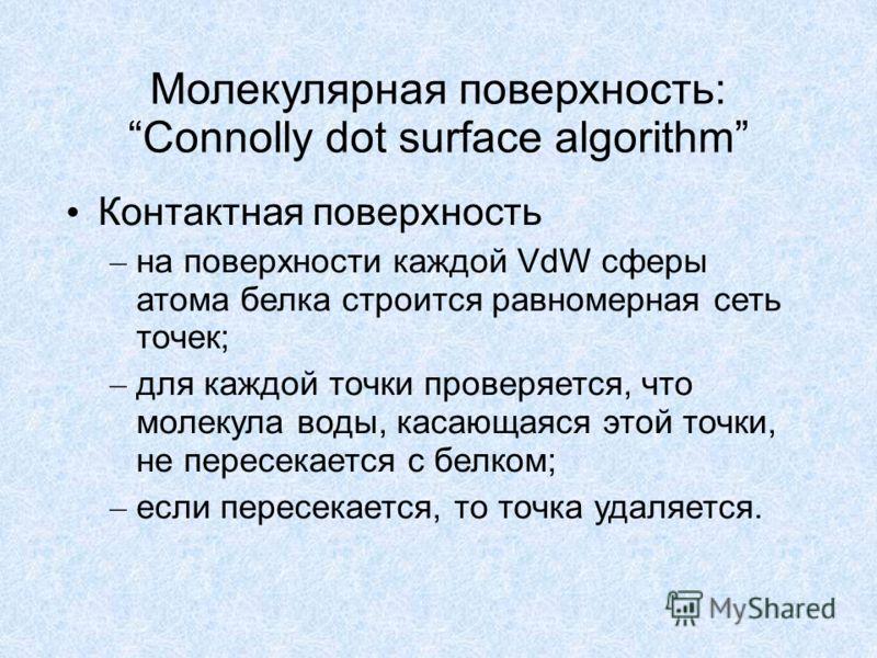 Молекулярная поверхность: Connolly dot surface algorithm Контактная поверхность – на поверхности каждой VdW сферы атома белка строится равномерная сеть точек; – для каждой точки проверяется, что молекула воды, касающаяся этой точки, не пересекается с