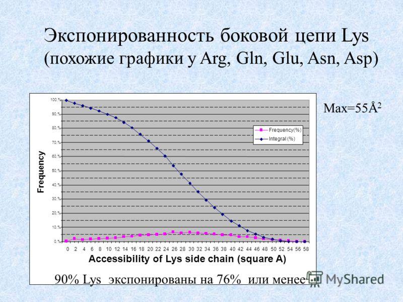 Экспонированность боковой цепи Lys (похожие графики у Arg, Gln, Glu, Asn, Asp) Max=55Å 2 0,% 10,% 20,% 30,% 40,% 50,% 60,% 70,% 80,% 90,% 100,% 0246810121416182022242628303234363840424446485052545658 Accessibility of Lys side chain (square A) Frequen