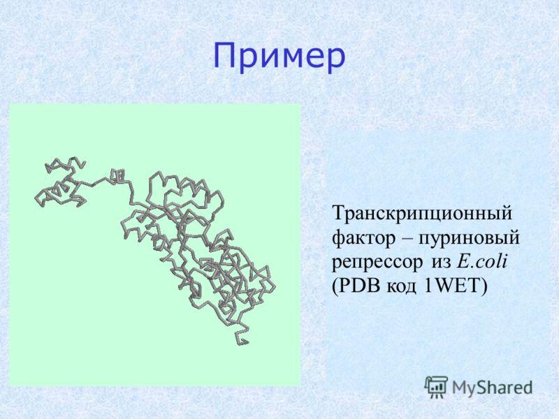 Пример Транскрипционный фактор – пуриновый репрессор из E.coli (PDB код 1WET)
