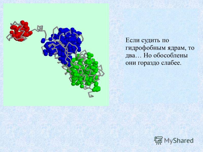Если судить по гидрофобным ядрам, то два… Но обособлены они гораздо слабее.