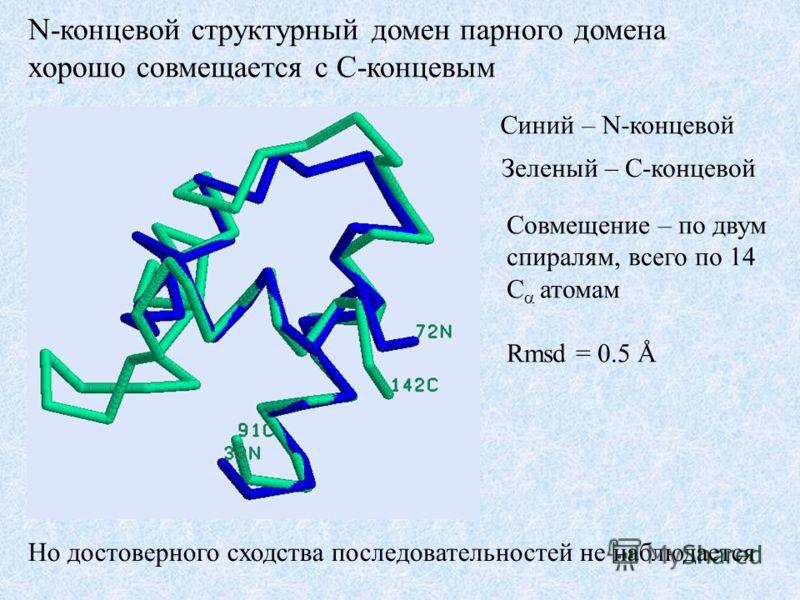 N-концевой структурный домен парного домена хорошо совмещается с C-концевым Синий – N-концевой Зеленый – C-концевой Совмещение – по двум спиралям, всего по 14 C атомам Rmsd = 0.5 Å Но достоверного сходства последовательностей не наблюдается
