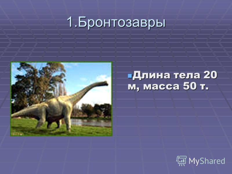 1.Бронтозавры Длина тела 20 м, масса 50 т. Длина тела 20 м, масса 50 т.