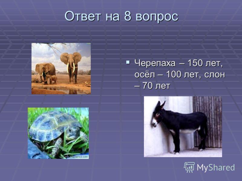 Ответ на 8 вопрос Черепаха – 150 лет, осёл – 100 лет, слон – 70 лет Черепаха – 150 лет, осёл – 100 лет, слон – 70 лет