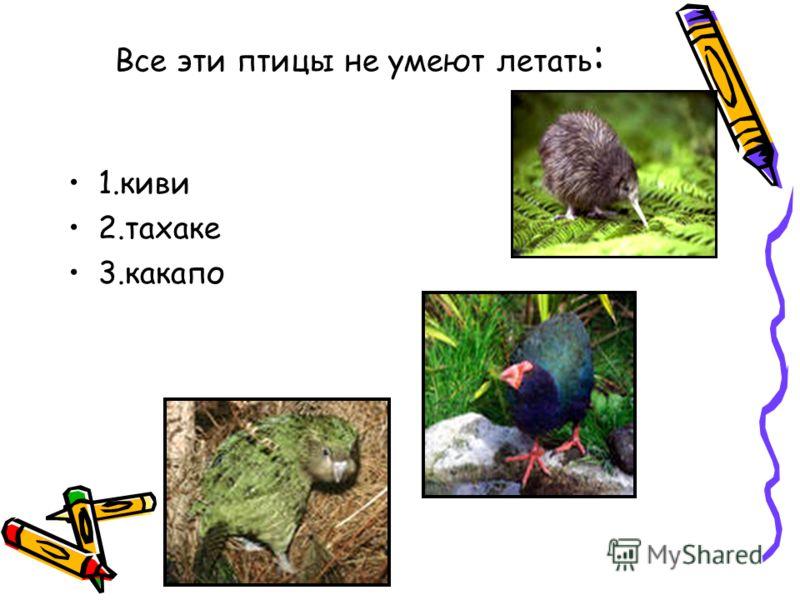 Все эти птицы не умеют летать : 1.киви 2.тахаке 3.какапо