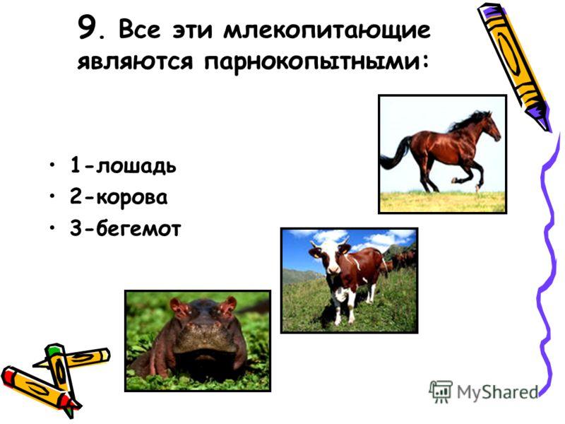 9. Все эти млекопитающие являются парнокопытными: 1-лошадь 2-корова 3-бегемот