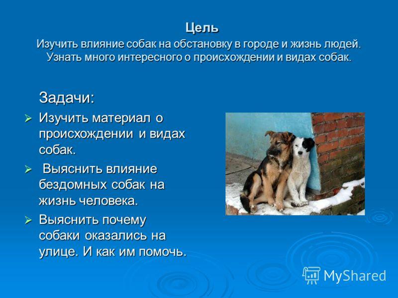 Цель Изучить влияние собак на обстановку в городе и жизнь людей. Узнать много интересного о происхождении и видах собак. Цель Изучить влияние собак на обстановку в городе и жизнь людей. Узнать много интересного о происхождении и видах собак. Задачи: