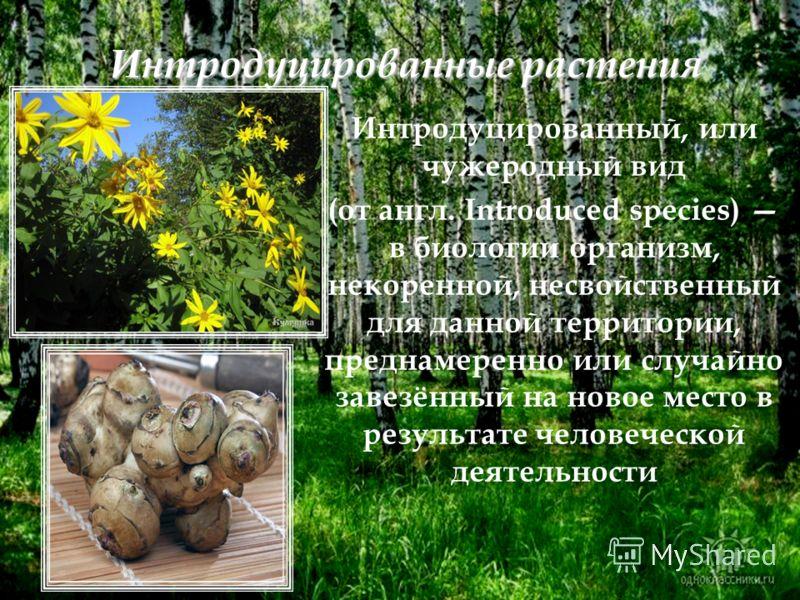 Интродуцированные растения Интродуцированный, или чужеродный вид (от англ. Introduced species) в биологии организм, некоренной, несвойственный для данной территории, преднамеренно или случайно завезённый на новое место в результате человеческой деяте