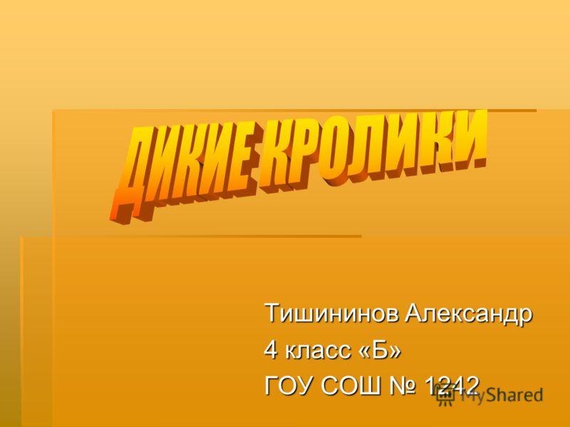 Тишининов Александр 4 класс «Б» ГОУ СОШ 1242